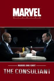 Marvel One-Shot: El consultor