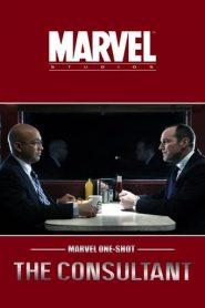 Marvel One-Shot: El consultor