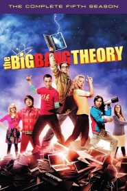 The Big Bang Theory: Temporada 5