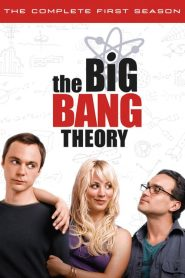 The Big Bang Theory: Temporada 1